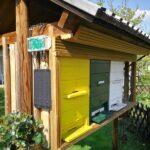 Wiegen der Bienenkolonie